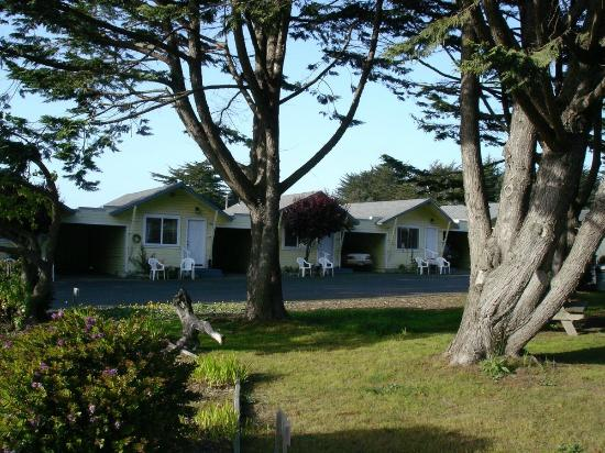 View of some of the Shoreline Cottages.