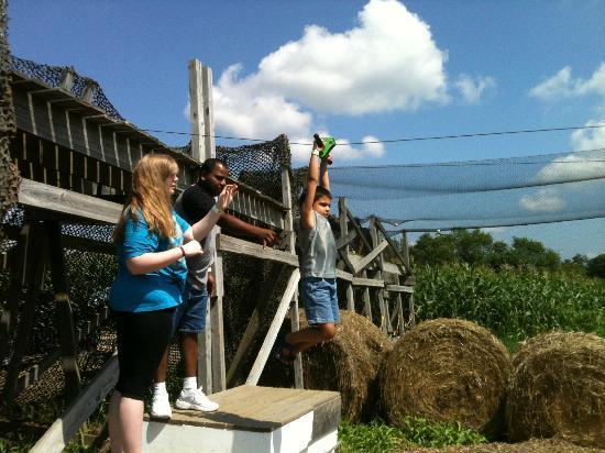 Davis' Farmland & Mega Maze: Mega Maze