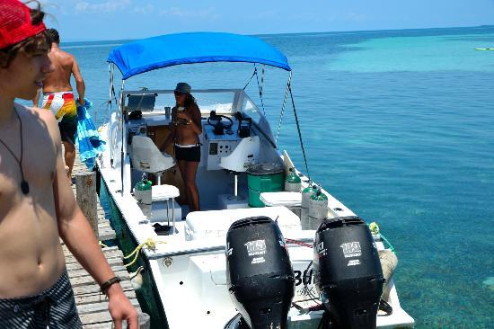 Tobacco Caye Lodge: Dive boat