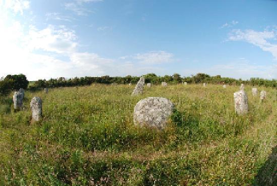 Trelew Farm : Stone Circle