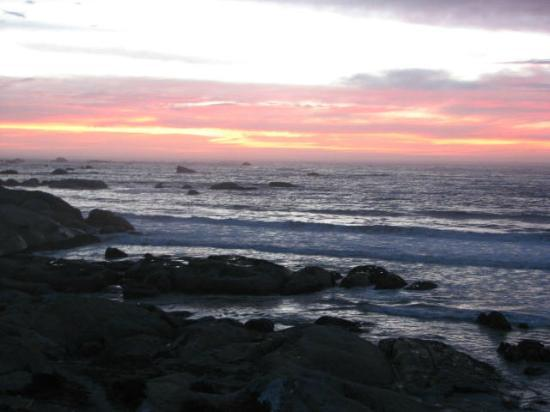 The Oystercatcher's Haven : Sunset