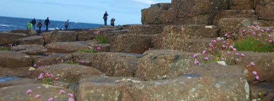 Giant's Causeway Visitor Centre: Great photo of the Causeway