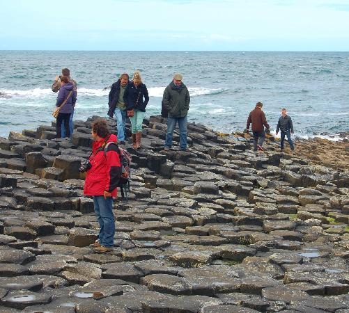 Giant's Causeway Visitor Centre: The Causeway at its best