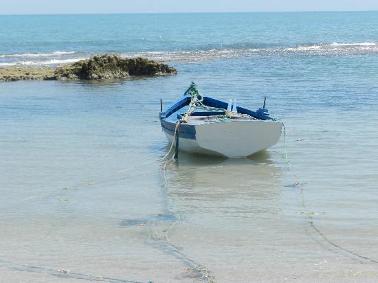 bateau de peche zarzis