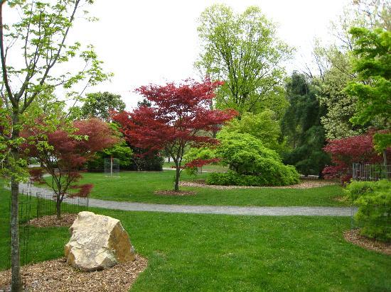 The Frelinghuysen Arboretum: Arboretum