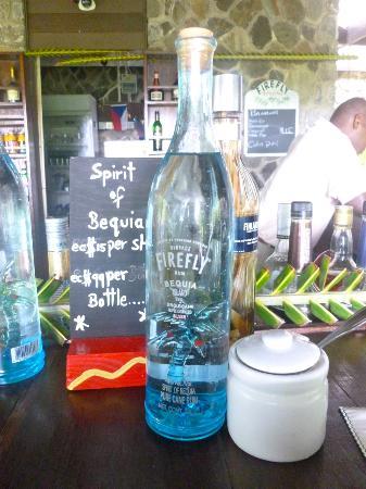 Firefly Plantation Hotel Bequia: Lobby bar