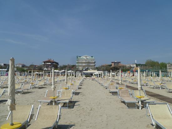 Bagno Conchiglia Cervia : Beach for the hotel picture of hotel conchiglia cervia