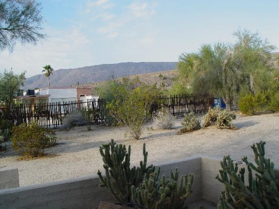 Boynton's - Hacienda del Sol: View from our patio, lots of desert wildlife