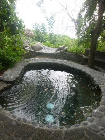Firefly Mustique Hotel: Pool
