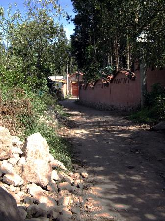 Posada Las Casitas del Arco Iris: The dusty track to the front gate
