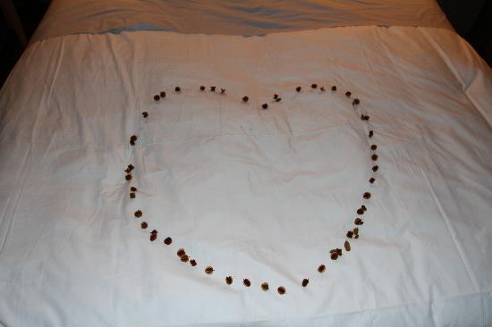 Singita Lebombo Lodge: Nice touch