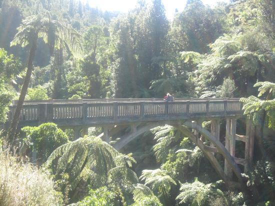 Bridge to Nowhere Tours: Bridge to Nowhere