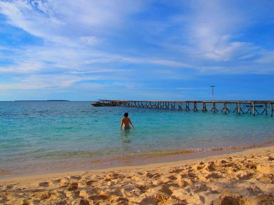 Derawan Dive Lodge: beach