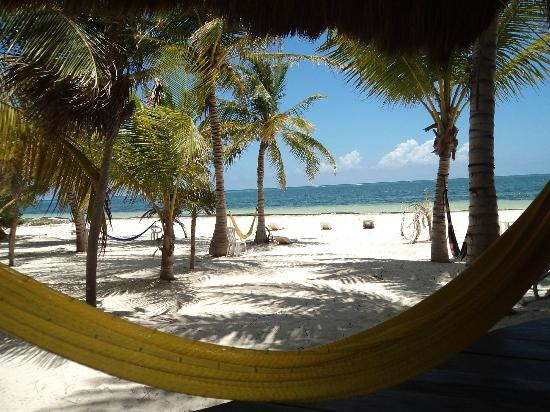 Xamach Dos: View from the kitchen, in front of my favorite yellow hammock!