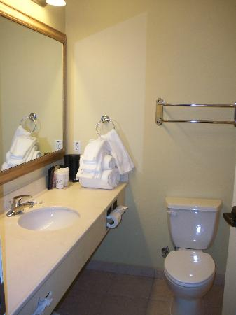Holiday Inn Express Greenville: Large bath - just move the towel rack from over the toilet!