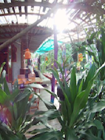 MOOV Restaurant, Club & Art Garden