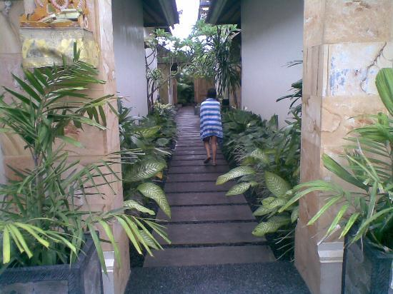 Kubu Kedungu : Theback alley