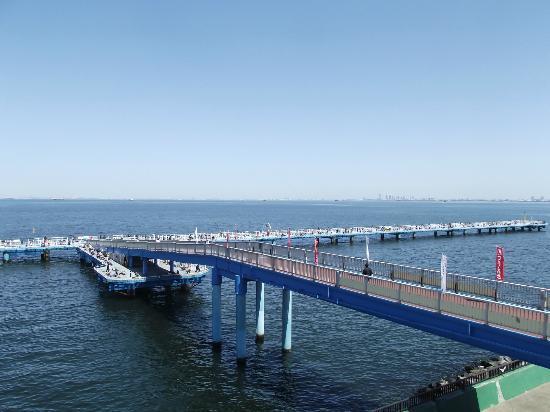 市原海づり施設
