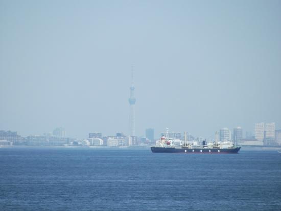 Ichihara Fishing Park: 東京スカイツリー  中央部分(屋上からの眺め)