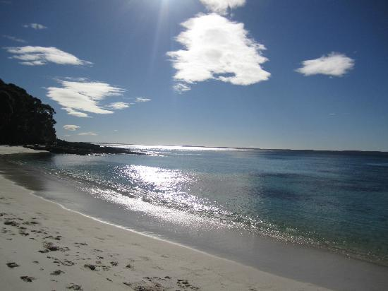 Hyams Beach Seaside Cottages: Gorgeous morning shot of the beach
