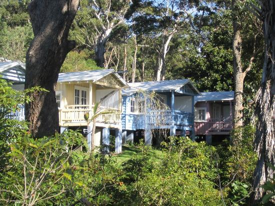 Hyams Beach Seaside Cottages: Another view of the cabins