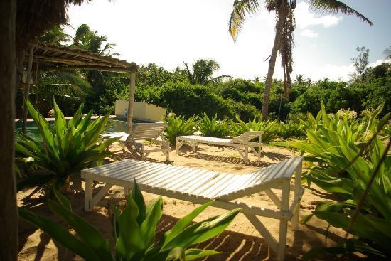 Bamboozi Beach Lodge: Pool Area