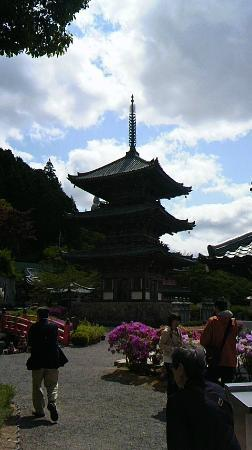Takatori-cho, Japão: 三重塔