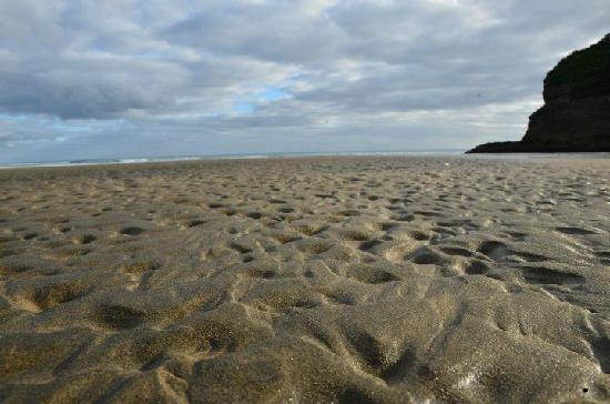 Bethells Beach: beach