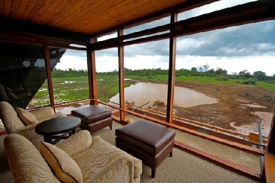 The Ark 195 283 Prices Hotel Reviews Kenya