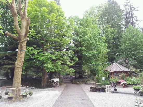Dammenmühle Landhotel: L'accès au lac