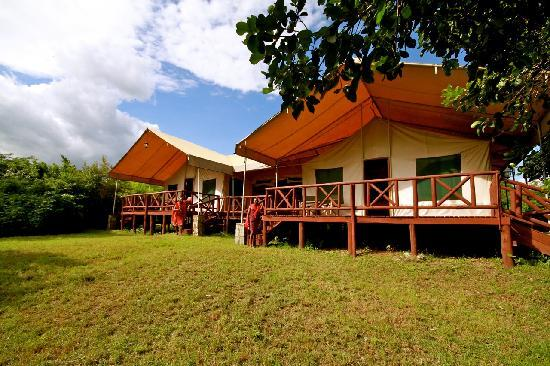 Mara Leisure Camp: Jumbo tents