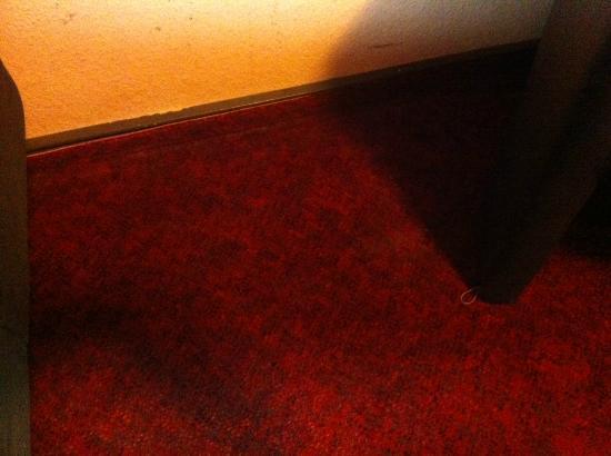 Villa Amadeus Hotel: Der Fussboden der nur so vor Dreck strotzte