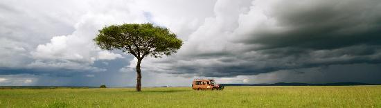 Mara Leisure Camp: Set in what is considered Kenya's prime wildlife area,MLC is located along the Talek River .