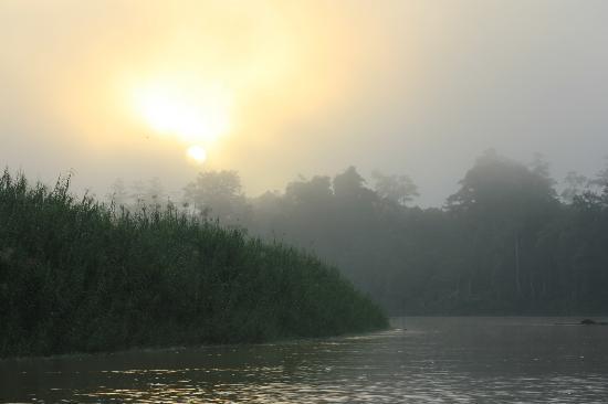 Nature Lodge Kinabatangan: Kinabatangan sunrise