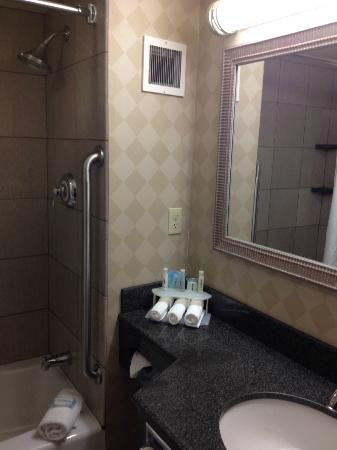 Holiday Inn Express Albany - Downtown : bathroom