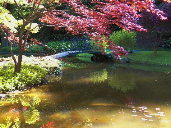 i Giardini di Villa Melzi : The Garden