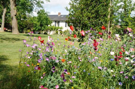 Bus-Saint-Remy, Frankrike: le jardin