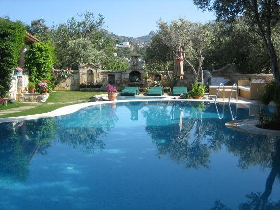 Sandima 37 Hotel Bodrum: Garden and Pool