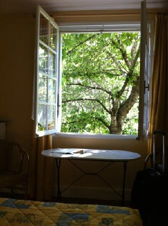 Hotel La Residence: a fruit-filled cherry tree outside the window Room 34. Dappled sunlight in the room