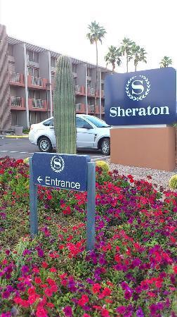 Sheraton Phoenix Airport Hotel Tempe: 部屋のすぐ前が駐車場で便利