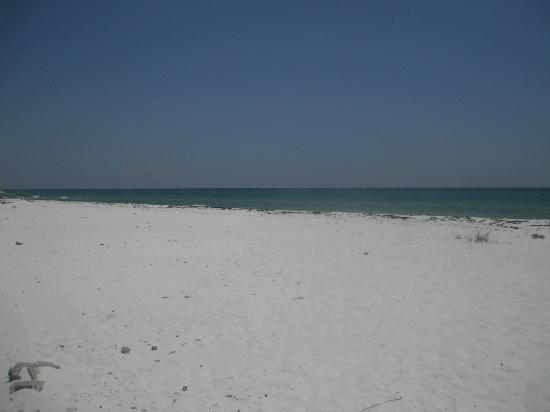 The Islander: Beach