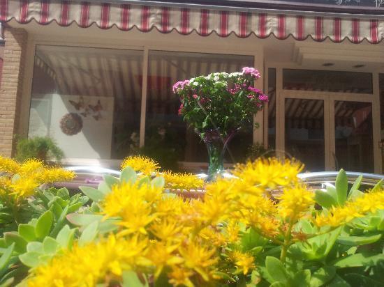 Hotel Malibran: terrazza bar....