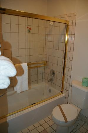 Castle Inn: Dusche