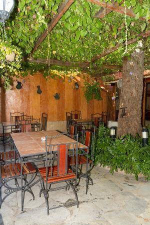 Restaurant - Paladar - La Moraleja: Terraza exterior