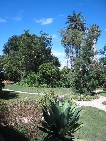 Rosedale Organic Farm B&B: The garden :)