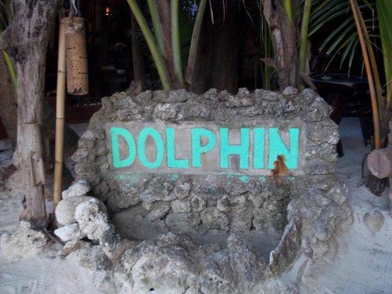 Dolphin Bungalows: Eingangsbereich