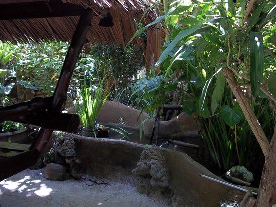 海豚小屋照片