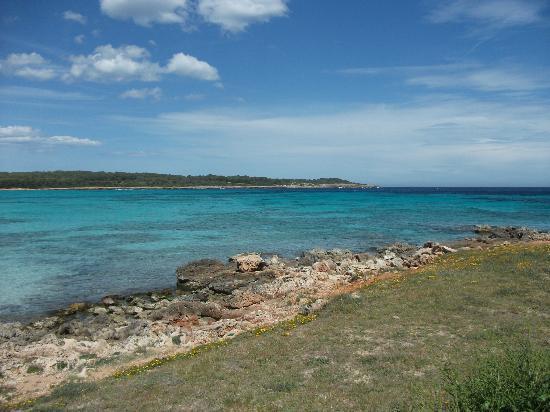 Sa Coma Playa Hotel Majorca
