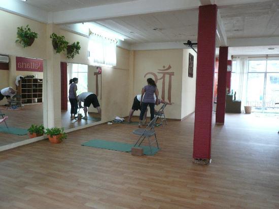 Yoga Vallarta & Pilates Studio PV : Sunlit spacious yoga room available for workshops, teacher trainings, & retreats