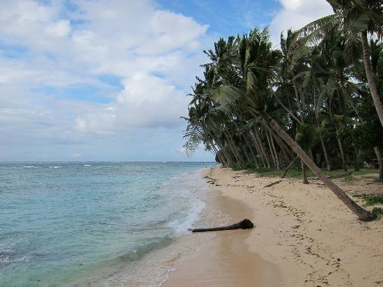 Lavena Lodge: the beach